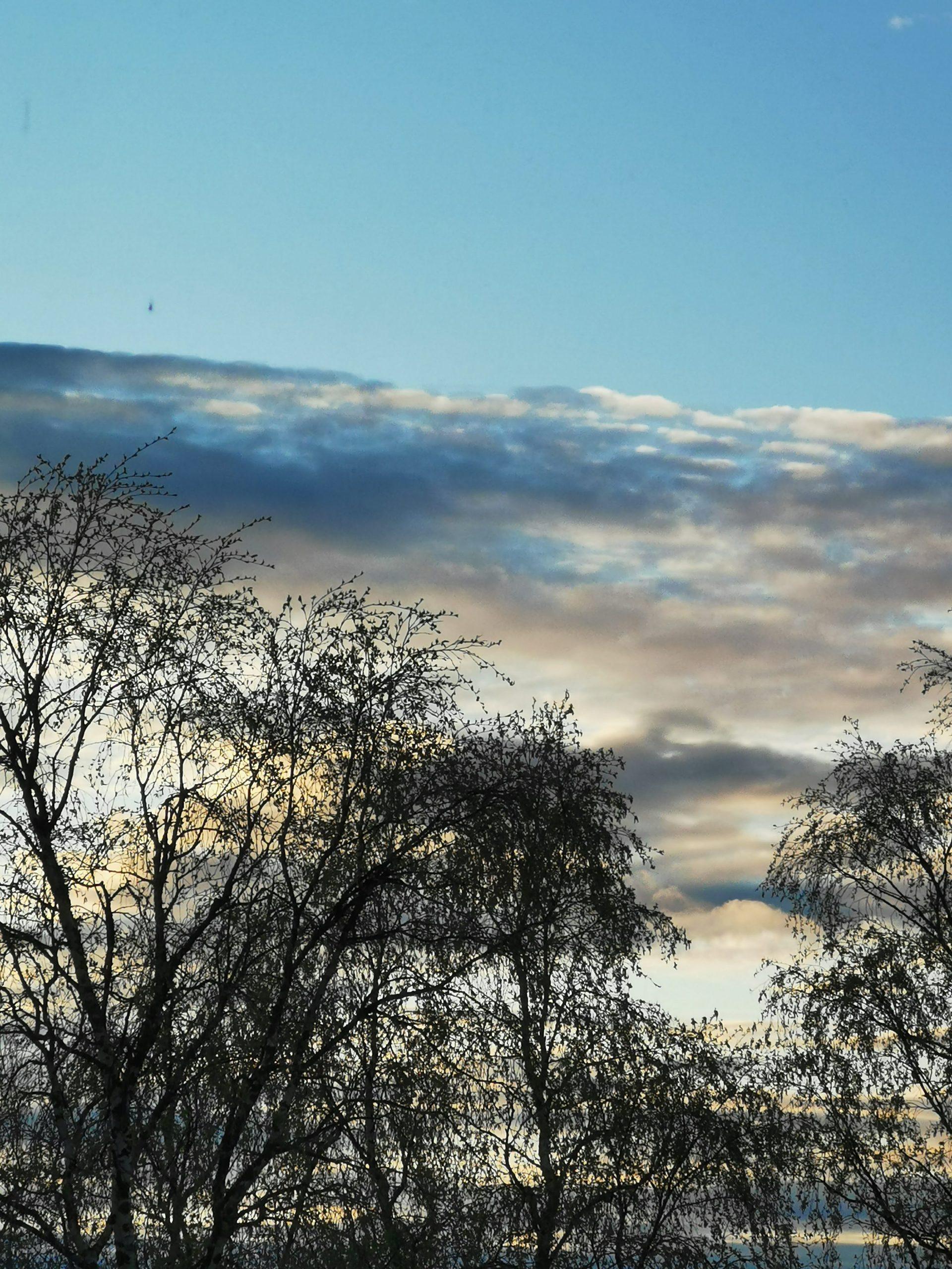 Pilvet, taivat ja puita. Kevät.