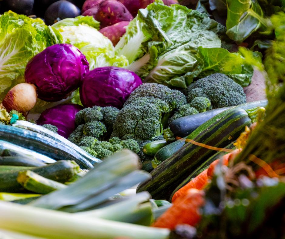 Kasviksia ja vihanneksia.